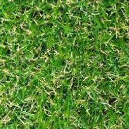 Artificial grass bristol